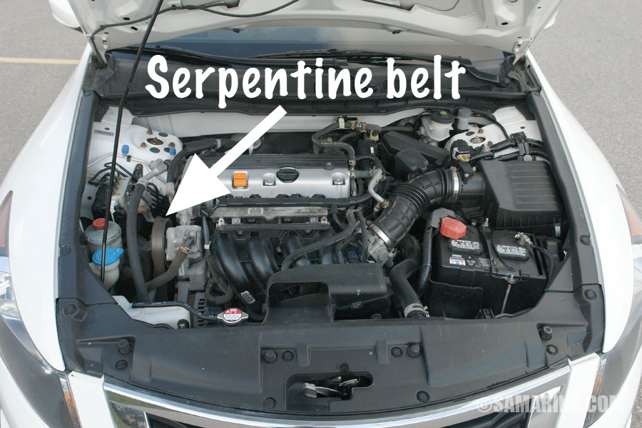 Serpentine Belt Tensioner Problems Signs Of Wear When To Replace Rhsamarins: 2007 Chevy Equinox Serpentine Belt Diagram At Gmaili.net